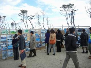 フィールドワーク 荒浜地区.jpg
