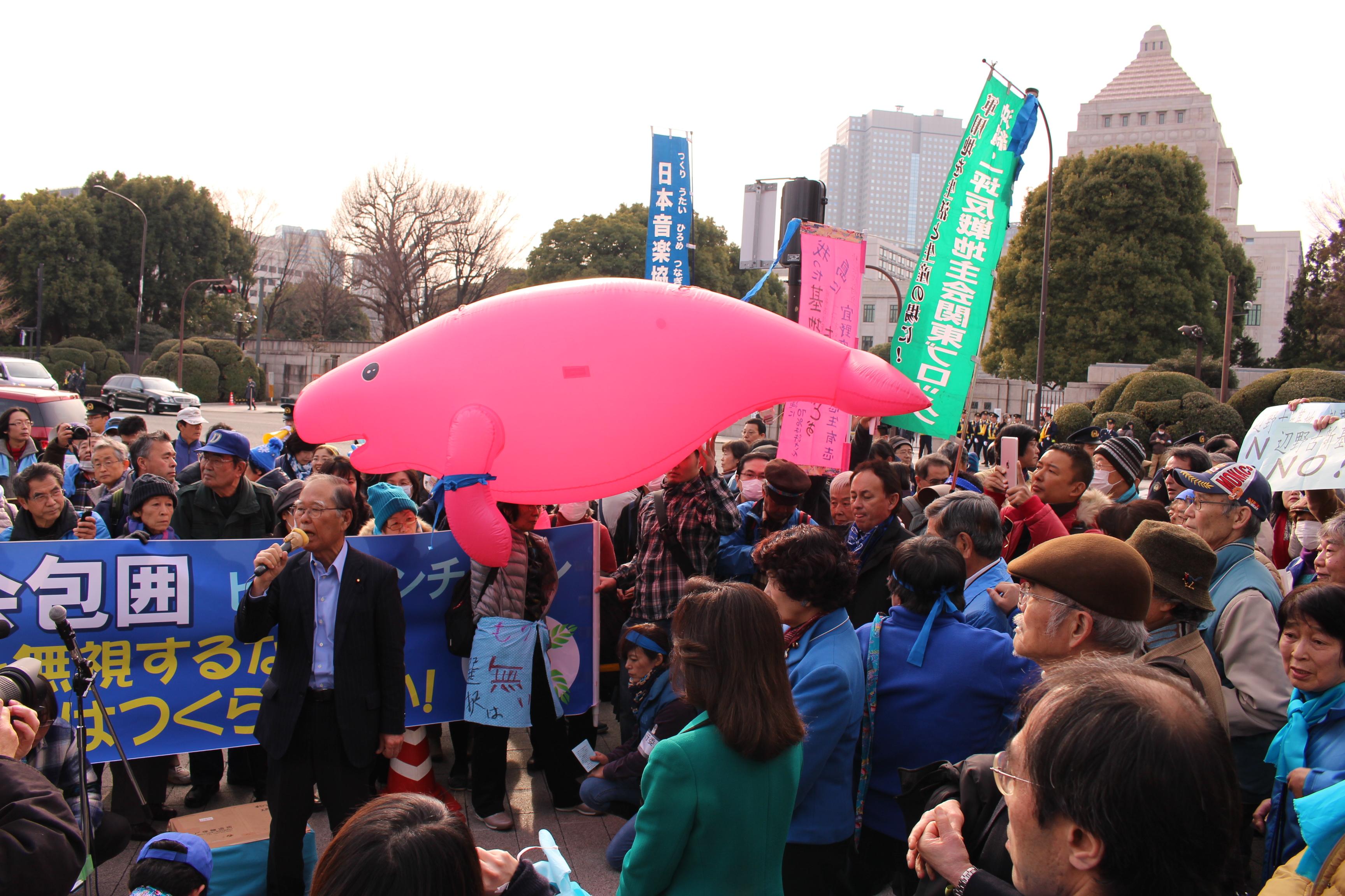 表紙1.25辺野古国会包囲.JPG
