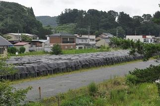 飯舘村廃棄物.JPG